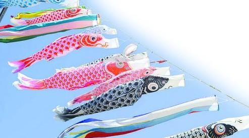 日本的男孩节--鲤鱼旗
