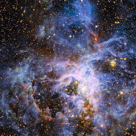 巨型椭圆星系中的黑洞