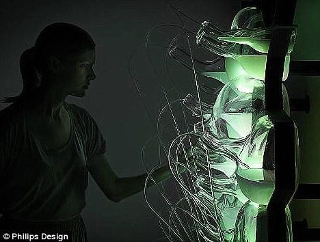 荷兰公司研发生物荧光灯 利用生物荧光细菌发光