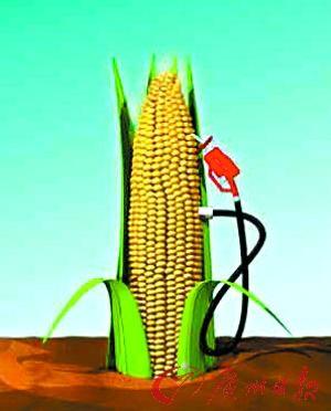 碳对抗背后 生物燃料潮涌
