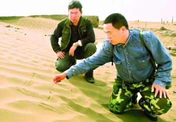 新疆汉式遗址