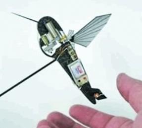 揭秘美国昆虫间谍:飞蛾变身半机械飞行器