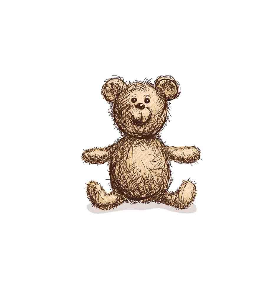 可爱泰迪熊的名字从何而来?