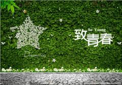 2014重庆中考满分作文:我为青春画上一个句号
