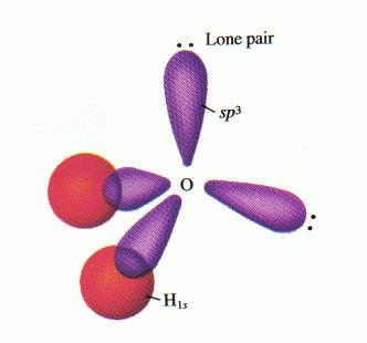 水分子杂化图