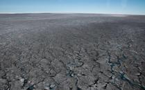 """格陵兰岛出现大片""""黑冰"""""""