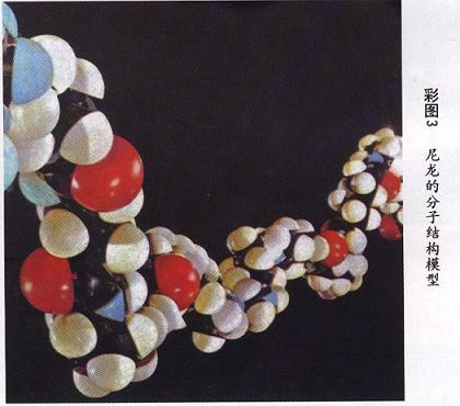 尼龙的分子结构模型