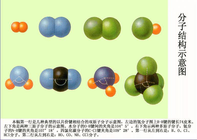 分子结构示意图