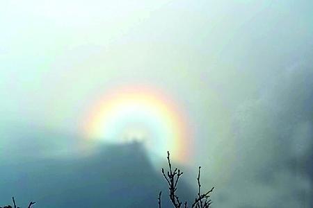 正月初一金佛山现佛光奇观 五彩缤纷呈圆形