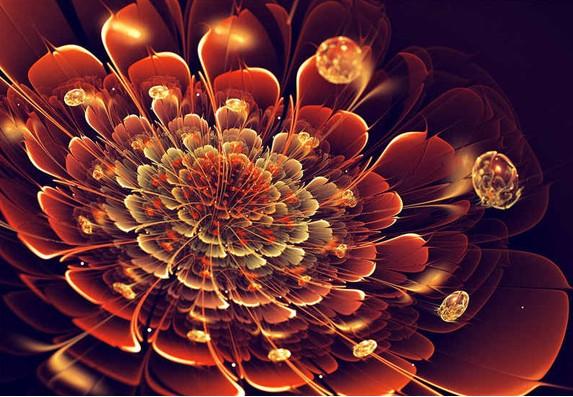 你从未见过的数学艺术之美1