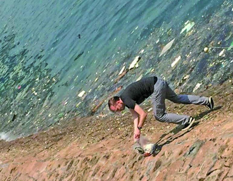青岛:金发老外海边捡垃圾