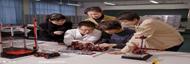 上海高考取消综合考 填志愿参考往年一本减25分